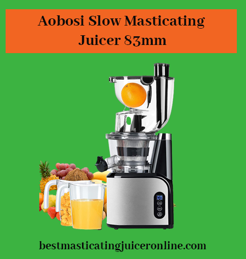 inexpensive masticating juicer