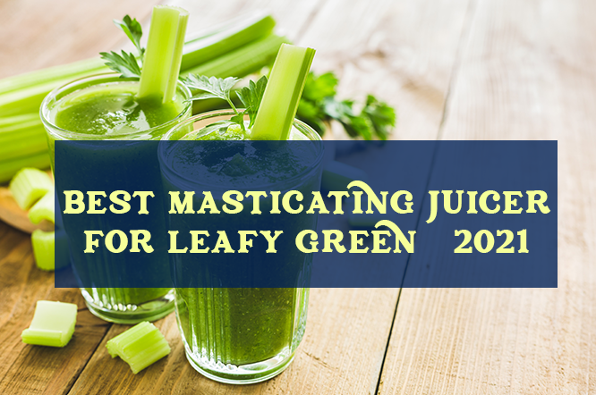 Best Masticating Juicers For Leafy Greens in 2021 – Ultimate Guide & Reviews
