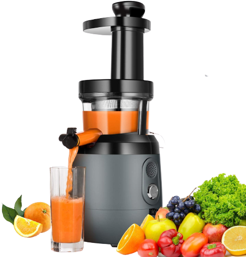 Hayek Masticating juicer