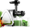 Homever Slow Masticating Juicer