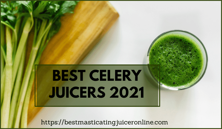 Best Celery Juicers 2021