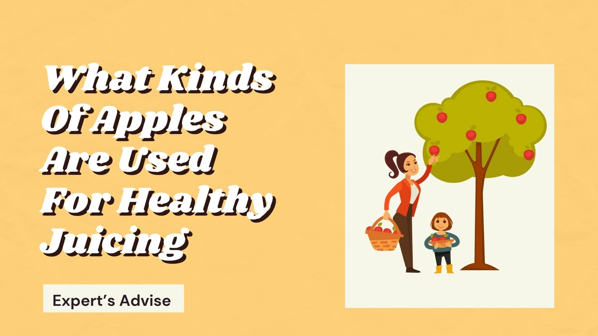 What Kinds Of Apples Are Used For Healthy Juicing? Expert's Advise