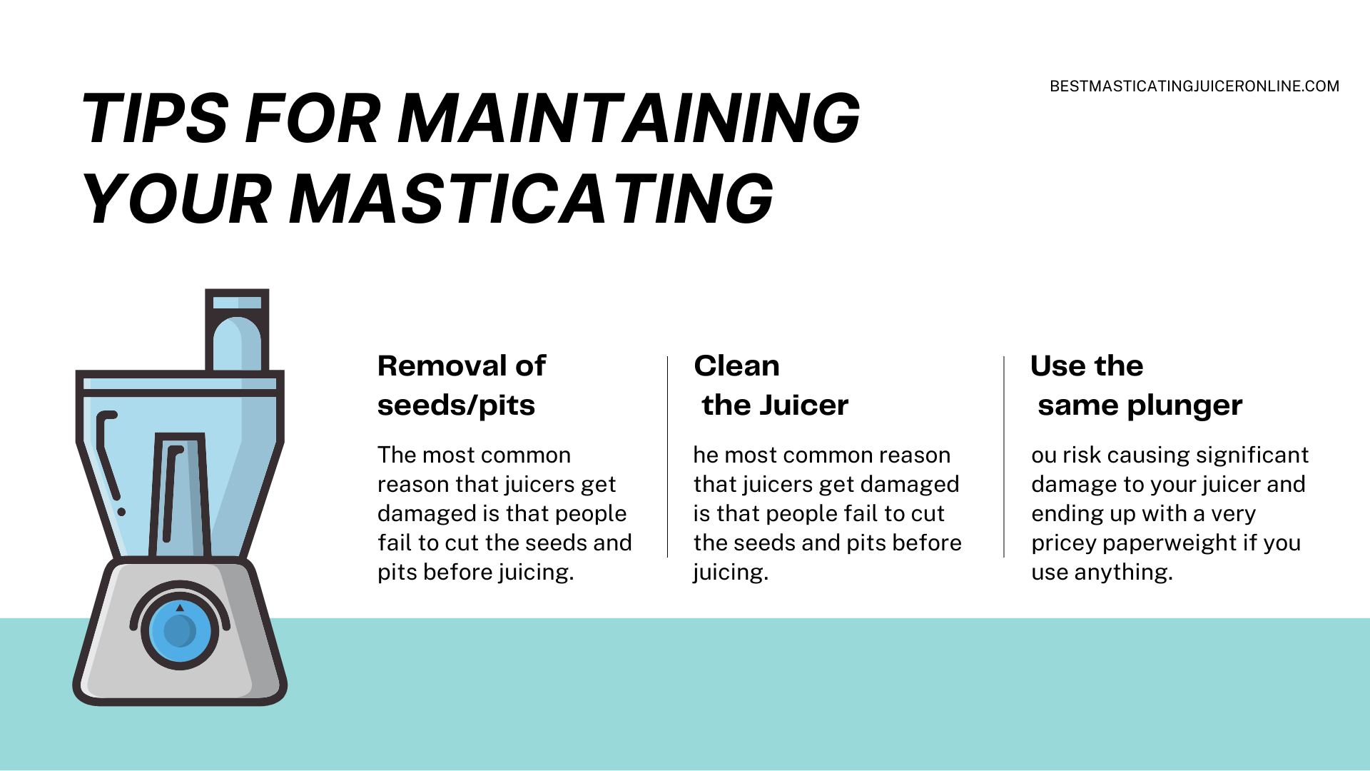 Tips for Maintaining Your Masticating