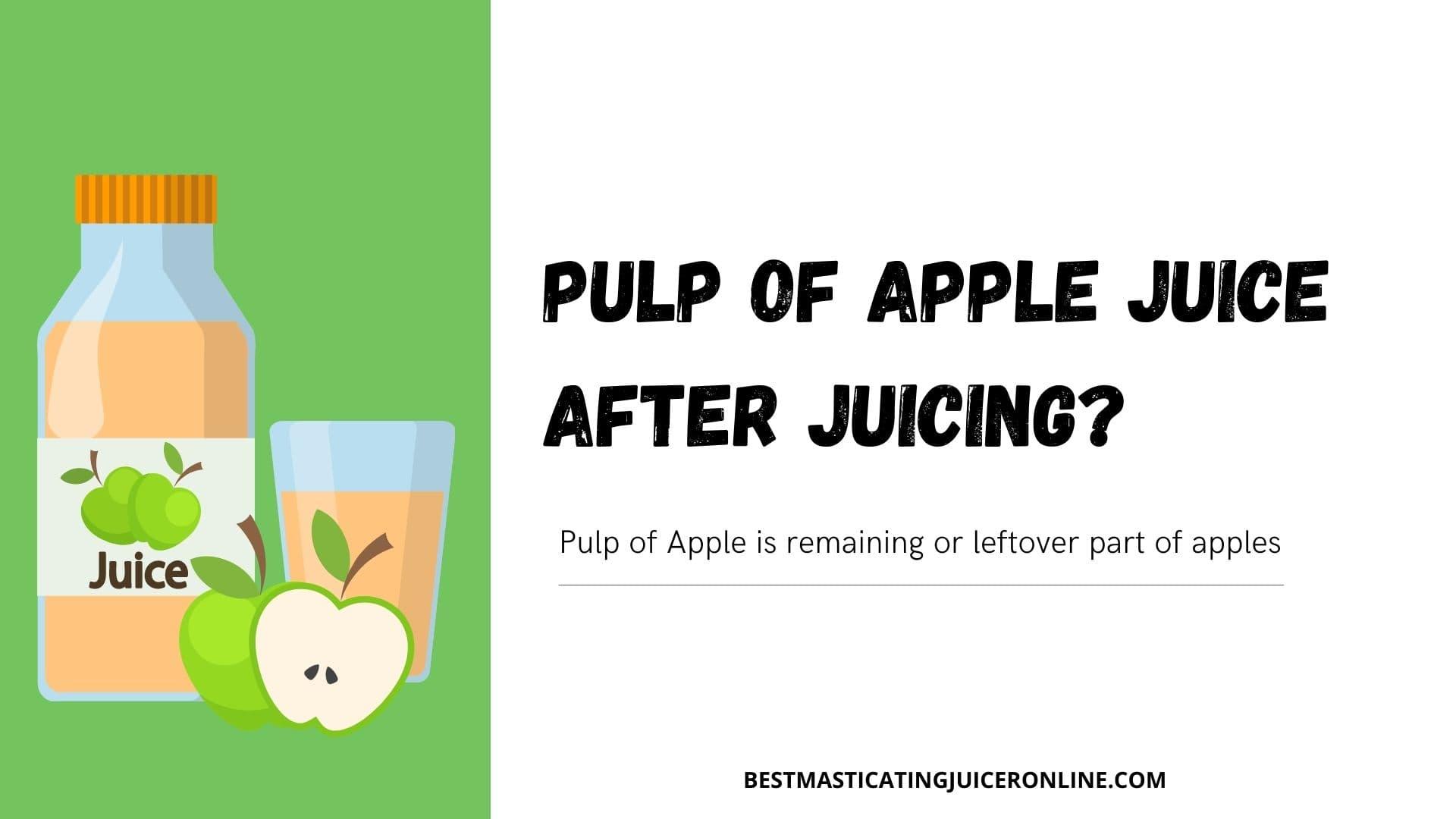 pulp of apple juice after juicing