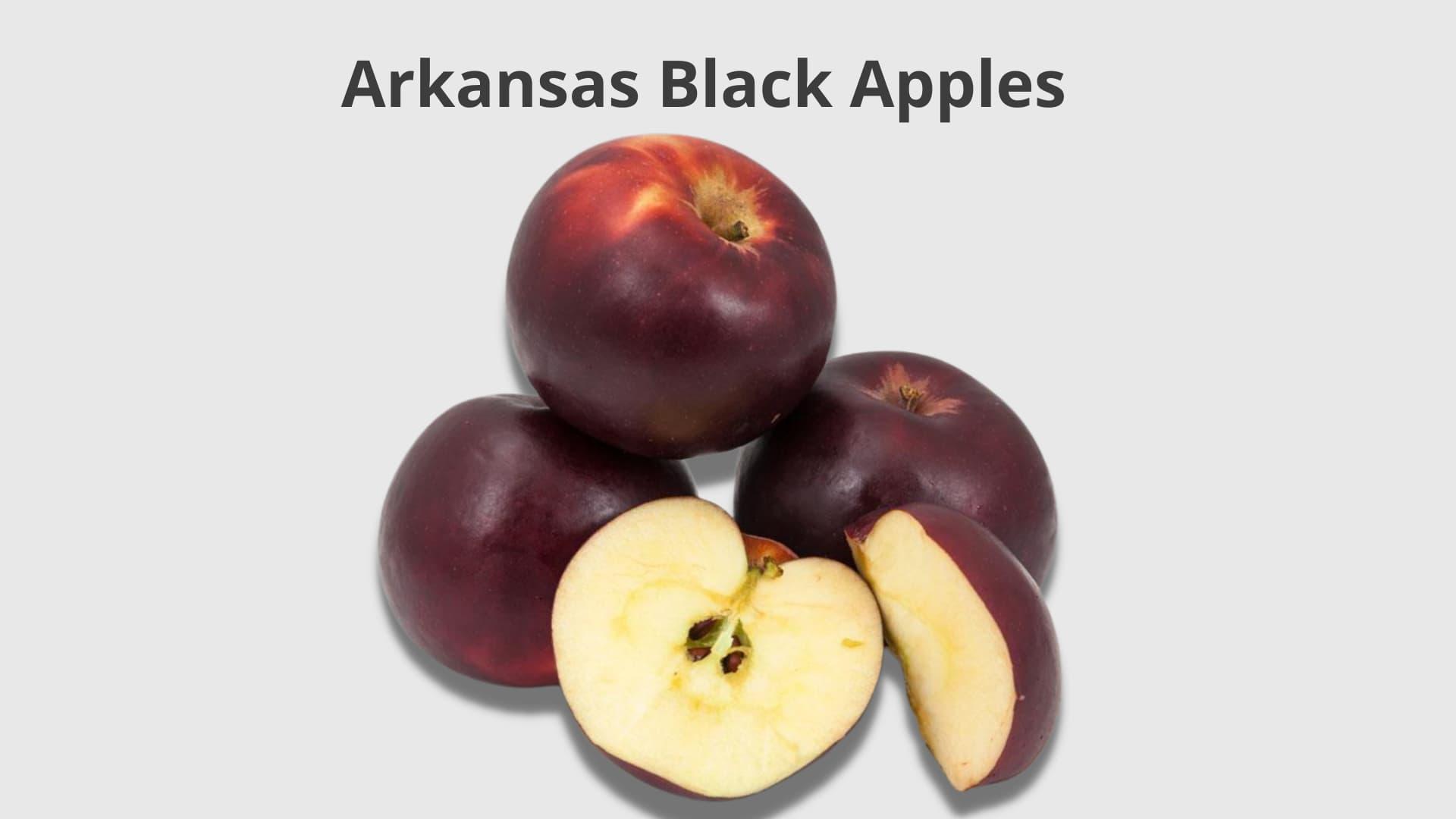 Arkansas Black Apples