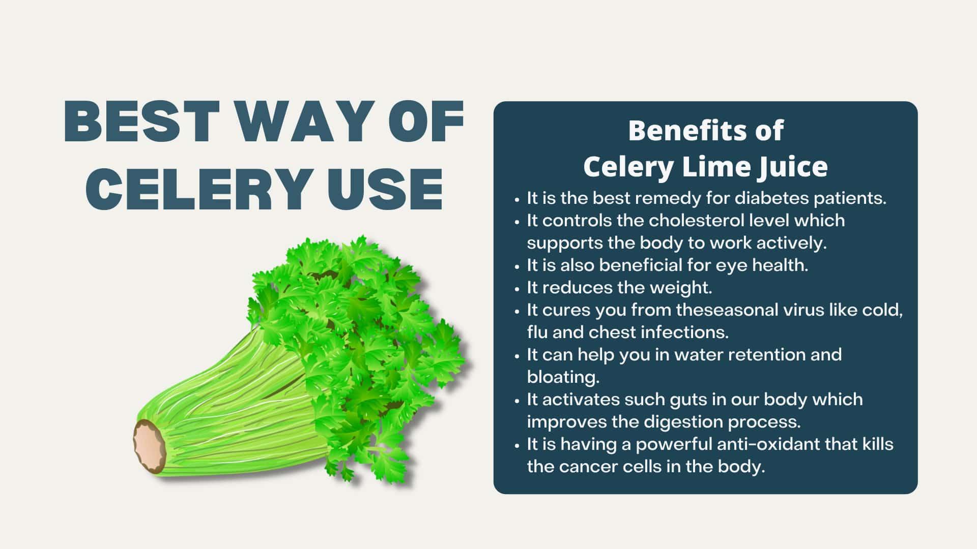 Best Way of Celery Use